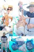 2月21日(水)メバル・カサゴ狙いでした。(^ω^)