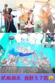 2月20日(火)メバル・カサゴ狙いでした。良い形が釣れてます。<br />30~23cm