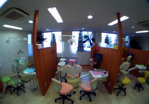 色分けされた半個室のチェア、プライバシーを考慮しつつ自然採光をできるだけ取り入れ明るくオープンな雰囲気