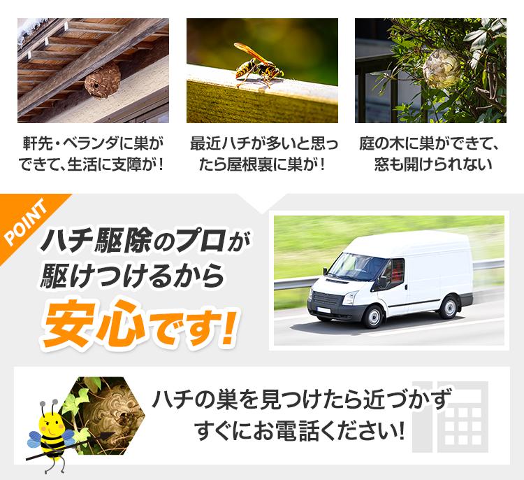 ハチ駆除のプロが駆けつけるから安心です!