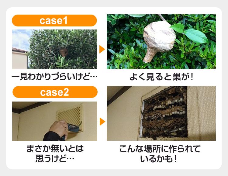 case1・case2