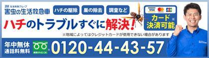 ハチのトラブルすぐに駆けつけ解決!電話番号:0120-44-43-57年中無休!通話料無料
